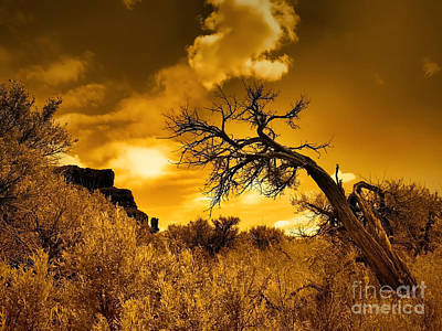 Photograph - The Weight Of The Clouds In Sepia by Tara Turner