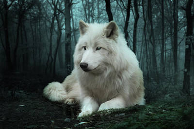 Dog Digital Art - The White Wolf by Julie L Hoddinott