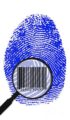 Galton Photograph - Thumbprint Identification by Science Source