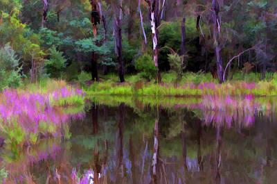 Photograph - Tidbinbilla Reflections by Paul Svensen
