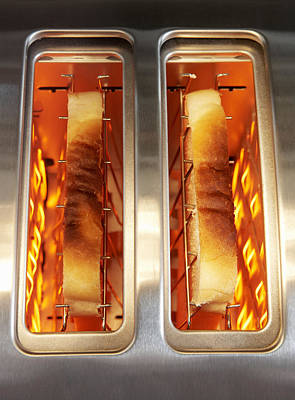 Toast Art Print by Mark Sykes
