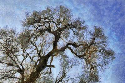 Tree Art Print by Algimantas Gavenauskas