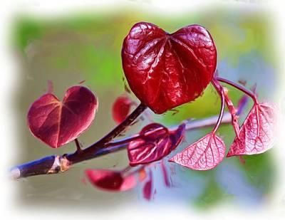 Photograph - Tree Of Hearts by Heidi Smith