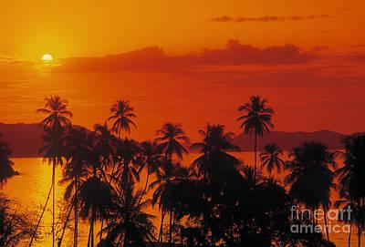 Tropical Beach Art Print by Juan  Silva