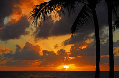 Photograph - Tropical Sunset by Lynn Bauer