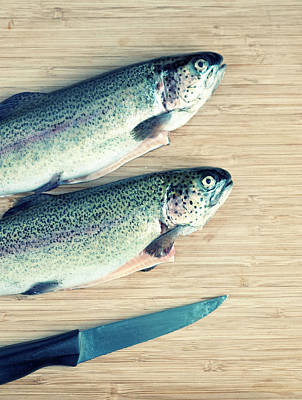 Rainbow Trout Photograph - Trouts by Carlo A