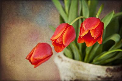 Digital Art - Tulip Cascade by Cheryl Davis