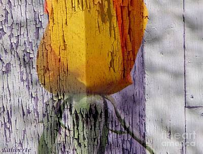 Photograph - Tulip  by France Laliberte