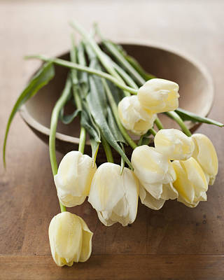 Bowl Of Flowers Photograph - Tulips On Bowl by Tetra Images