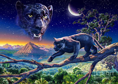 Photograph - Twilight Panther by Adrian Chesterman