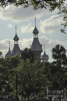 Photograph - University Of Tampa by Nancy Greenland