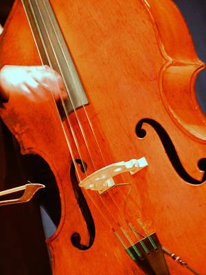 Photograph - Upright Bass 2 by Anita Burgermeister