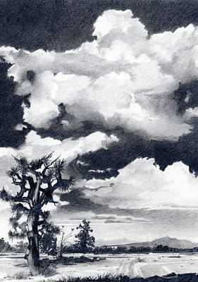 Robert Duvall Drawing - Vaulted Heaven by Robert Duvall