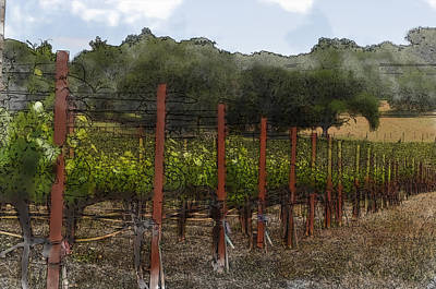 Digital Art - Vineyard In Summer by Brandon Bourdages