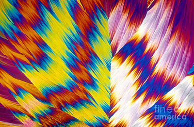 Photograph - Vitamin B12 Crystal by Michael W Davidson