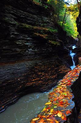 Photograph - Watkins Glen State Park by Puzzles Shum