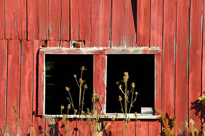 Photograph - Weathered Red Barn Window Of New Jersey by David Letts