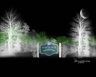 Photograph - White Roe Lake-livingston Manor Ny by Ericamaxine Price