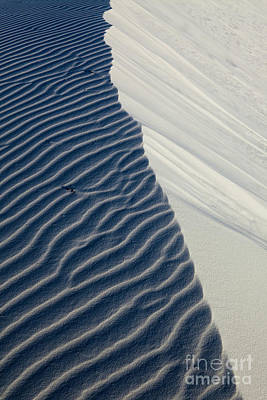 White Sands Art Print by Keith Kapple