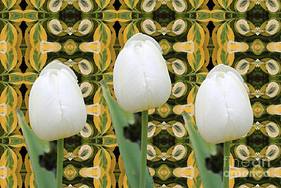 Digital Art - White Tulips by Donna L Munro