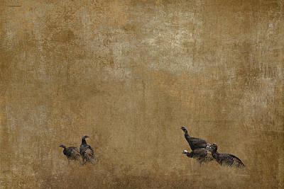 Wild Turkey Digital Art - Wild Turkey by Ron Jones
