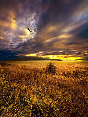 Wings And Prayers Print by Phil Koch
