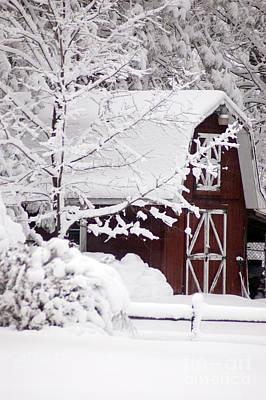 Winter Barn Print by Cheryl Cencich