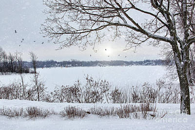 Photograph - Winter Landscape Overlooking A Lake by Sandra Cunningham