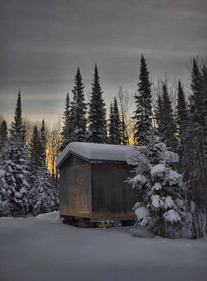 Winter Solitude Art Print by Heather  Rivet