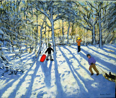 Woodland In Winter Art Print by Andrew Macara