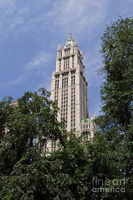 Photograph - Woolworth Building by Carol  Bradley