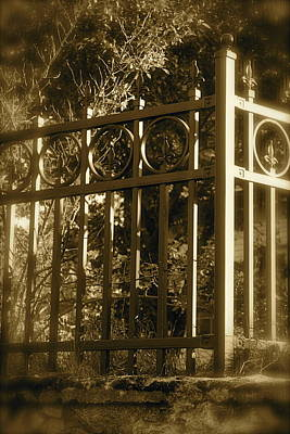 Art Print featuring the photograph Wrought Iron Fence by Robin Regan
