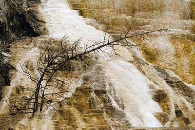 Art Print featuring the photograph Yellowstone Color by J L Woody Wooden