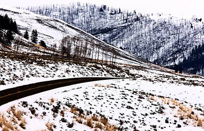 Thermal Digital Art - Yellowstone Park Wyoming Winter Snow by Mark Duffy
