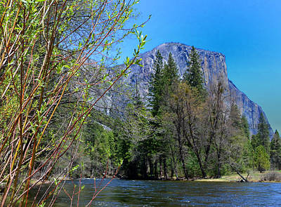 Photograph - Yosemite by Rima Biswas