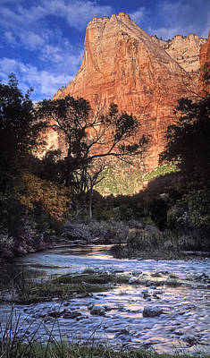 Zion National Park View Art Print by Dave Mills