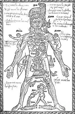 Zodiac Man, Medical Astrology Art Print by Science Source