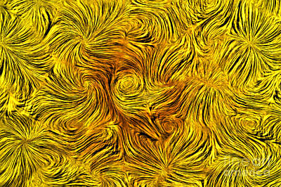 Squiggles Digital Art - Abstract by Michal Boubin