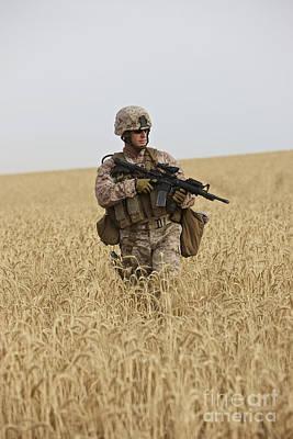 Fine Dining - U.s. Marine Patrols A Wadi Near Kunduz by Terry Moore