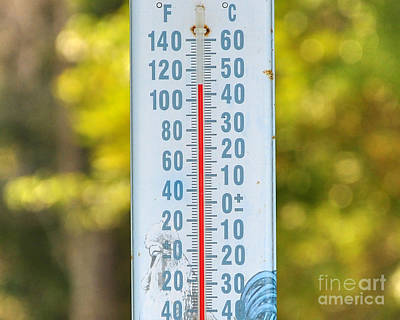 110 Degrees In The Shade Art Print by Al Powell Photography USA