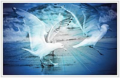 Seagulls  Art Print by Debra  Miller