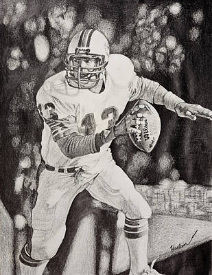 Miami Dolphins Drawing - 13 by Mike  Haslam