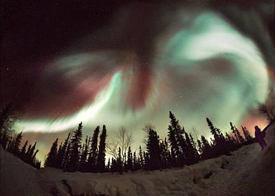 Aurora Borealis Print by Chris Madeley