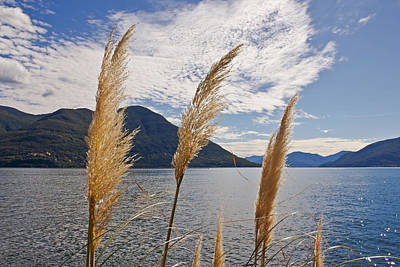 Lake View Photograph - Lake Maggiore by Joana Kruse