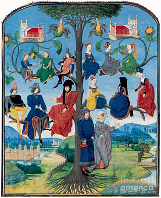 Photograph - 15th-century Family Tree by Photo Researchers