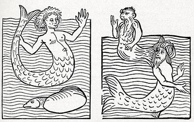 Of Mermaid Photograph - 15th Century German Woodcut Print by Cci Archives