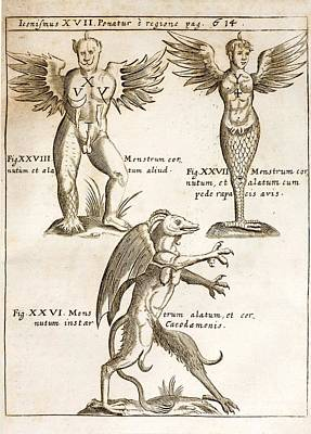 Devils Claw Photograph - 1662 Schott Demons by Paul D Stewart