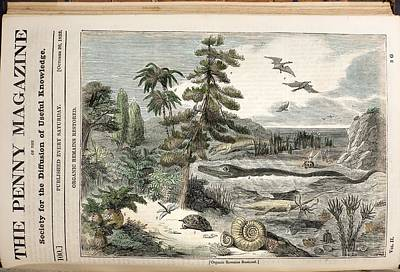 1833 Penny Magazine Extinct Animals Color Art Print by Paul D Stewart