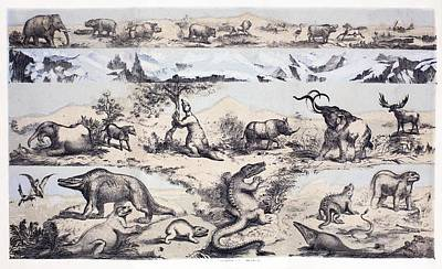 Fossil Reconstruction Photograph - 1860 Duncan's Prehistoric Epoch Panorama by Paul D Stewart