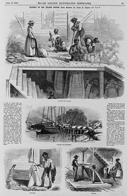 1869 Illustration Show Ex-slaves, Now Art Print by Everett